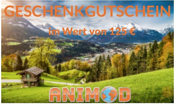 Animod Hotelgutschein