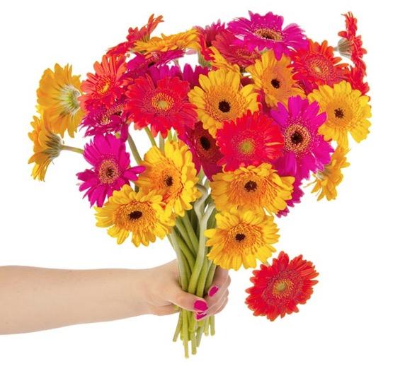 Germini Blumenstrauß