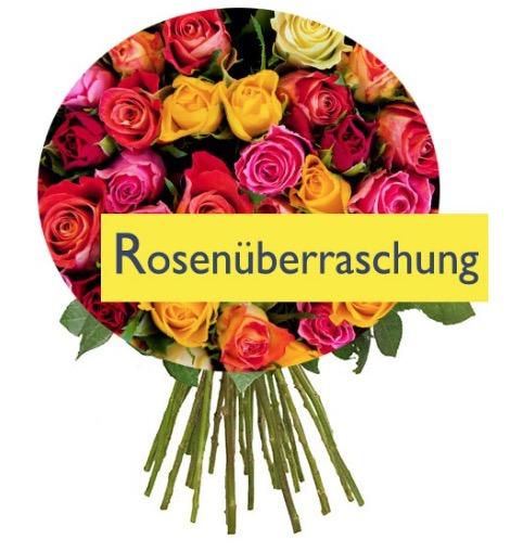 BlumeIdeal Rosenüberraschung