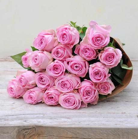 2017-12-12 10_33_25-20 rosafarbene Rosen